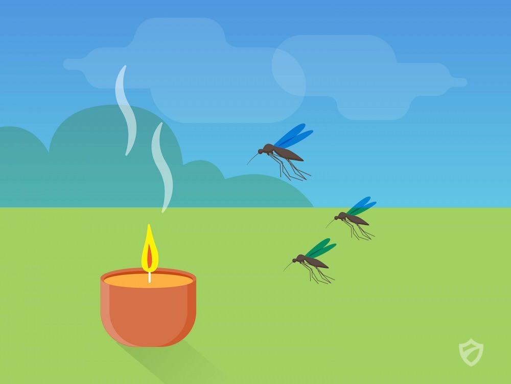 Best Mosquito Repellents | Mosquitoes Repellent Guide